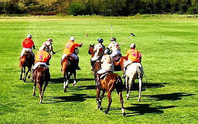 affordable polo holidays